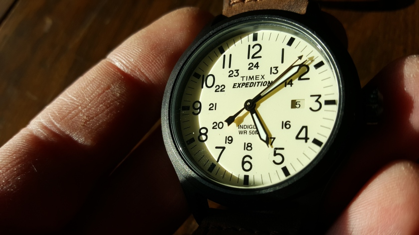 Review Timex Expedition Scout Watch Journeywind Junk